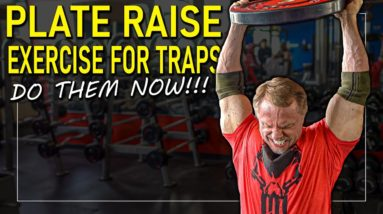 plate raise for lower traps workout