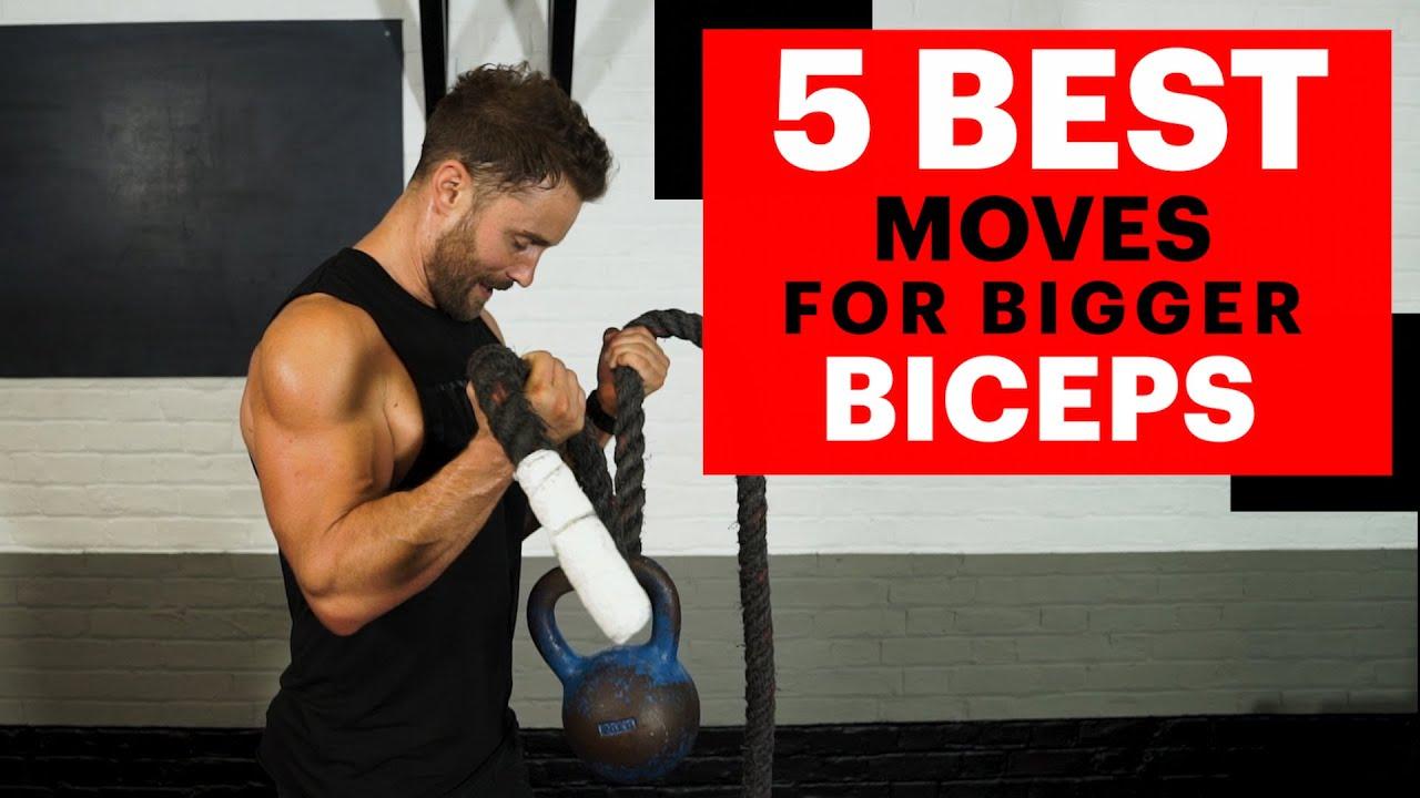best biceps training